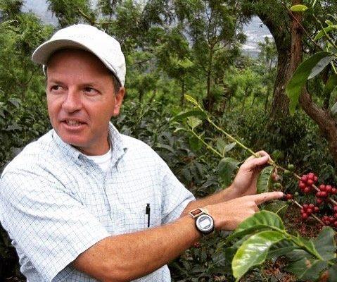 『サンタ・カタリーナ農園』の新豆が入荷しました!