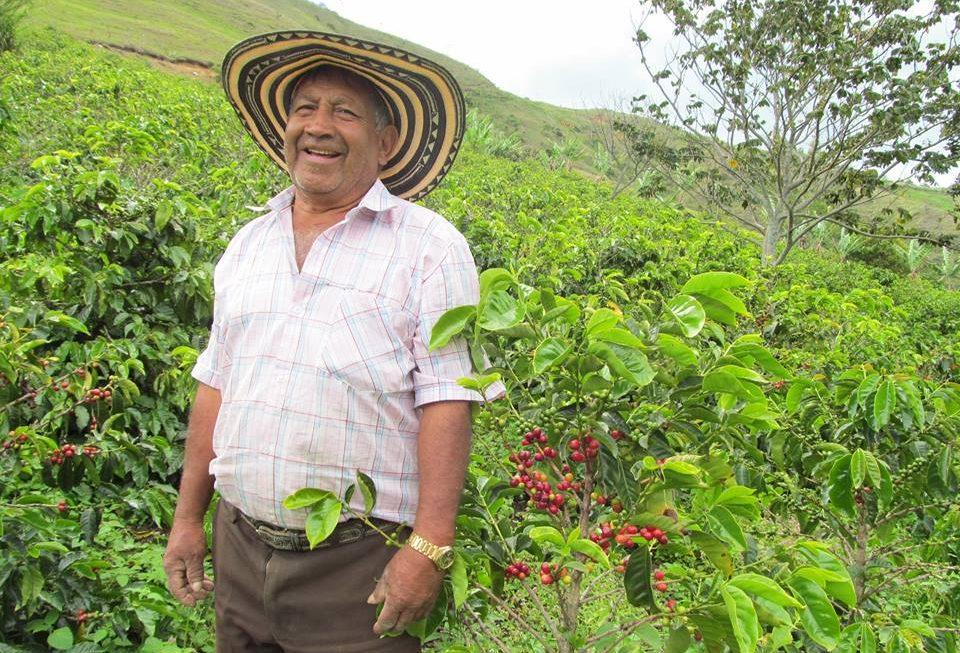 最高の産地コロンビア南部ブエサコ市から新豆入荷!