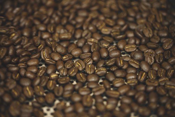 人気のケニア・キリニャガ地区の珈琲豆。キウニュファクトリー