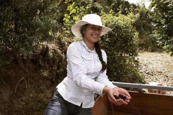【極上の新豆入荷】コスタリカ オルティス2000農地