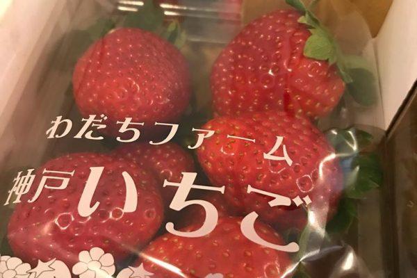 神戸『わだちファーム』の苺、届きました