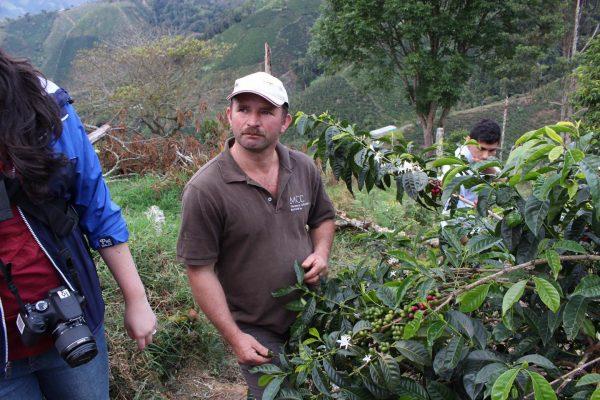 【新豆入荷】ジャサル農地&3年ぶりのオクタビオ・ルエーダさん
